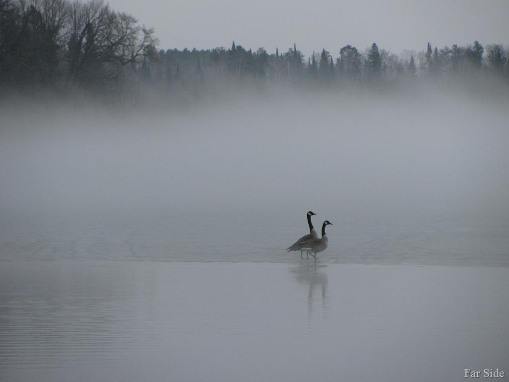 Long-Lake-Fog-March-17