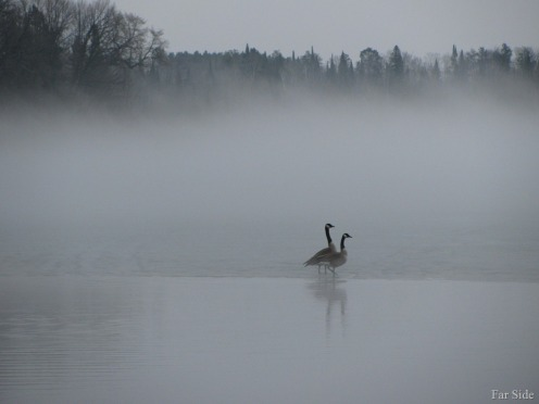 Long-Lake-Fog-March-17