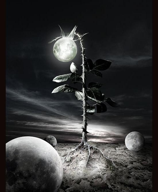 under de last moon