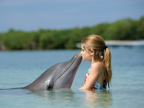 girl-child-dolphin-sea