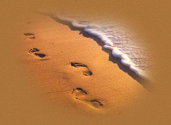 footprintspic2