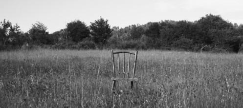 cropped-soledad-dimedio-estudio