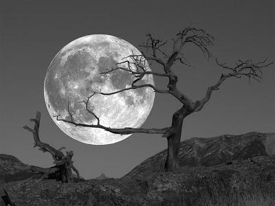 full-moon-wallpaper
