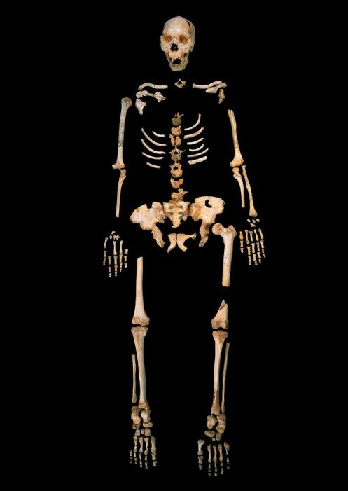 homo-heidelbergensis_-sima-de-los-huesos_credit-javier-trueba-madrid-scientific-films