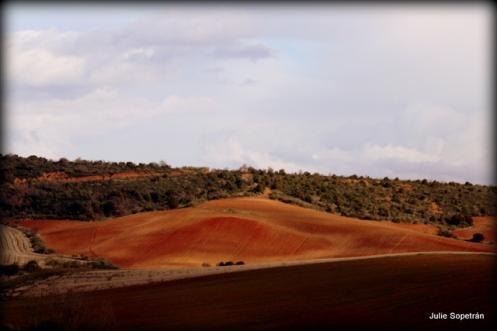 paisaje (1)